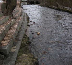 Mill Brook flows under Mystic St.